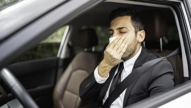 Làm thế nào để chống nôn hiệu quả trên xe tự lái? ảnh 1