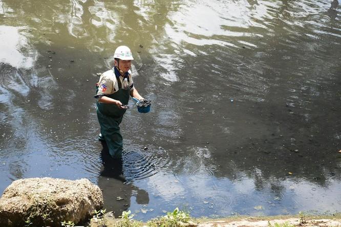 Chuyên gia Nhật công bố kết quả làm sạch sông Tô Lịch ảnh 1