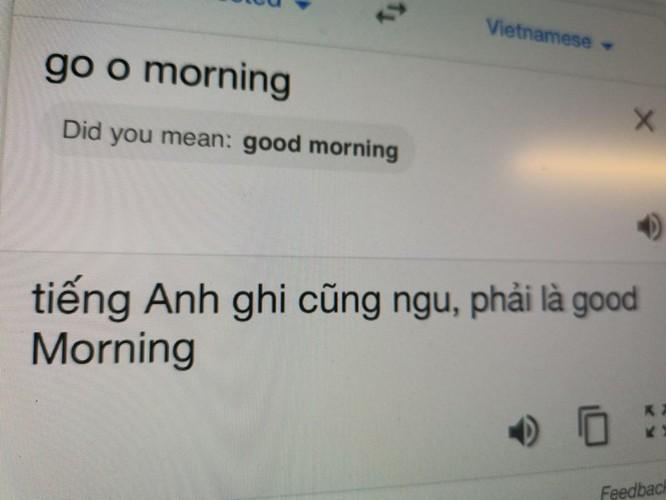 Google Dịch tiếng Việt đang bị phá hoại ảnh 1