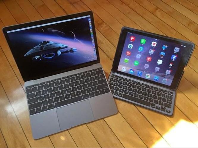 Apple có thể đưa OLED vào máy tính xách tay và máy tính bảng ảnh 1