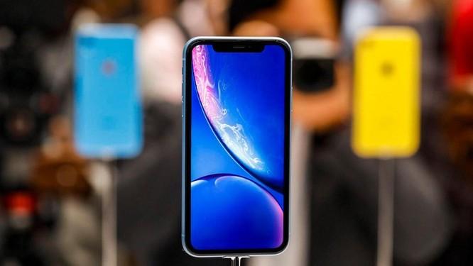 iPhone rẻ nhất của Apple năm 2019 sẽ thú vị hơn ảnh 1