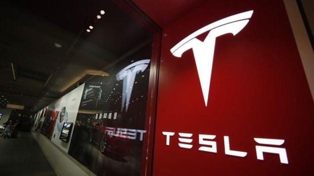 Tập đoàn Tesla đối mặt với khủng hoảng nhân sự cấp cao ảnh 1