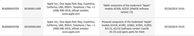Hai mẫu iPad mới có thể được Apple sớm ra mắt ảnh 2