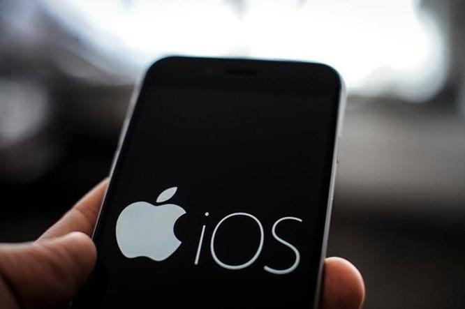 Phát hiện lỗ hổng tồn tại 2 năm qua, gần 1 tỷ iPhone nguy cơ bị hack ảnh 1