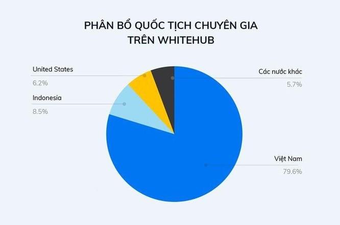 Hơn 400 lỗ hổng bảo mật đã được phát hiện thông qua nền tảng WhiteHub ảnh 3