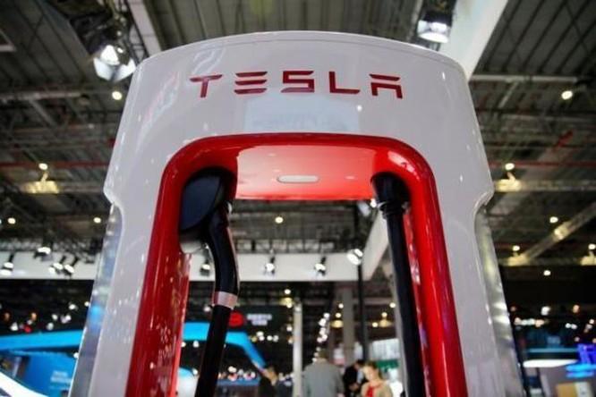Doanh nghiệp Brazil đàm phán cung cấp pin lithium cho Tesla ảnh 1