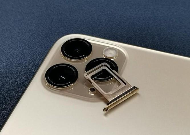 Muốn dùng 2 SIM thường, nên mua iPhone 11 xách tay từ nước nào? ảnh 1