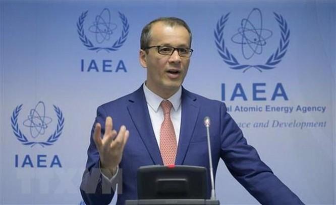 IAEA: Vai trò của điện hạt nhân trong cuộc chiến biến đổi khí hậu ảnh 1
