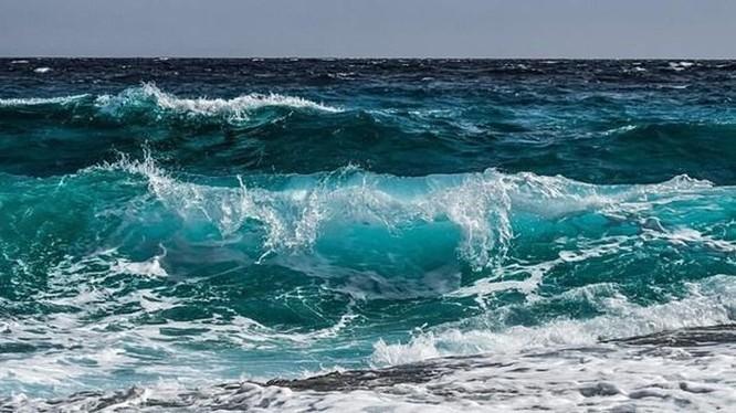 Anh phát triển sản xuất nhiên liệu phản lực sinh học từ nước biển ảnh 1
