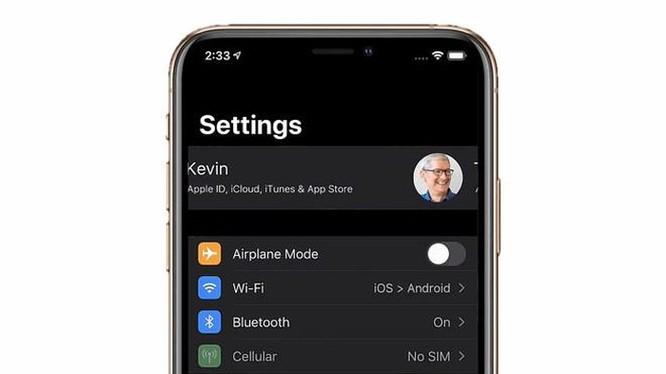 Bản dựng iOS 14 - màn hình Always On, chia đôi màn hình ảnh 5