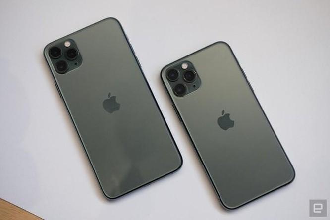 Apple đang cắt giảm sản lượng iPhone 11 Pro và Pro Max? ảnh 1