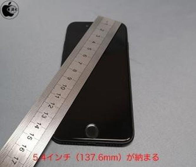 iPhone 12 5,4 inch sẽ có kích thước bé bằng iPhone 8 ảnh 1