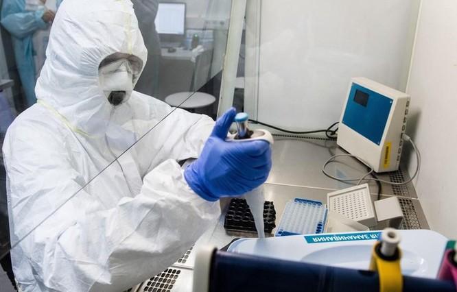 Tập đoàn công nghệ Nga xét nghiệm virus SARS-CoV-2 miễn phí ảnh 1