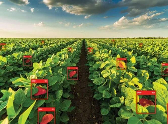 5 cách mà công nghệ 5G sẽ làm thay đổi lĩnh vực nông nghiệp ảnh 1
