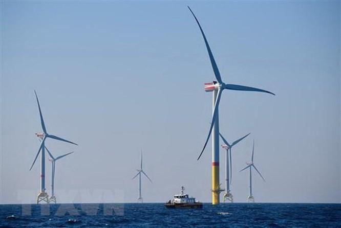 IEA: Năng lượng tái tạo là trọng tâm trong kế hoạch khôi phục kinh tế ảnh 1