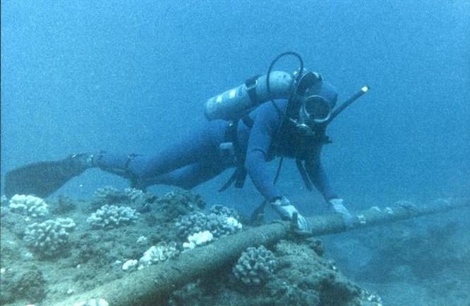 Tuyến cáp quang thứ ba của Việt Nam gặp sự cố ảnh 1