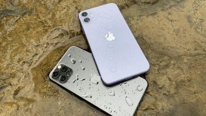 Tin buồn về iPhone 12 ảnh 1