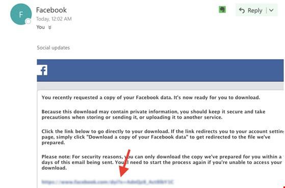 Mẹo sao lưu toàn bộ dữ liệu trên Facebook ảnh 3