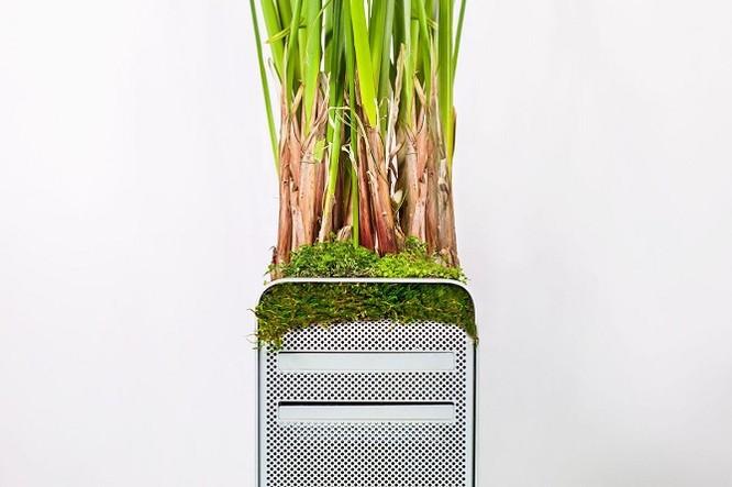 Dùng máy tính Mac trồng cây: Đừng quá phụ thuộc vào công nghệ ảnh 6