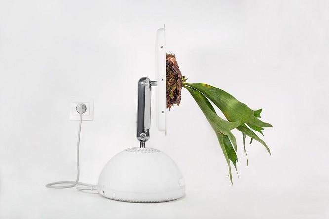 Dùng máy tính Mac trồng cây: Đừng quá phụ thuộc vào công nghệ ảnh 8