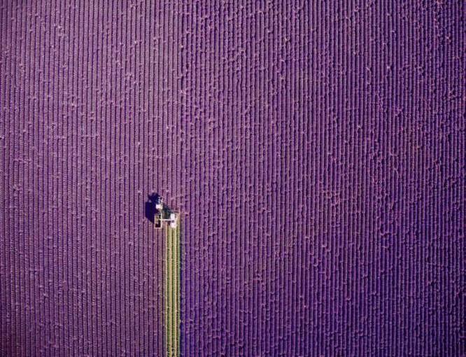 Những hình ảnh chụp từ drone đẹp nhất năm 2016 ảnh 8