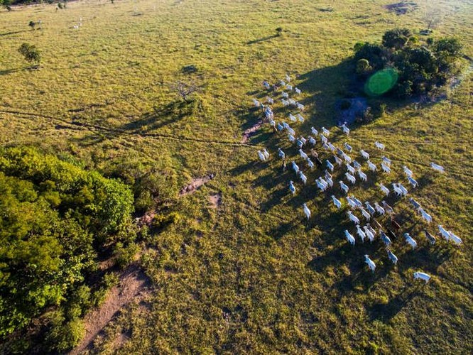 Những hình ảnh chụp từ drone đẹp nhất năm 2016 ảnh 2