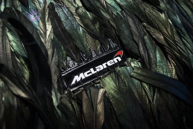 Siêu xe McLaren 570GT thân phủ lông vũ ảnh 2