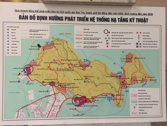 Phó Thủ tướng Vũ Đức Đam nói về quy hoạch bán đảo Sơn Trà ảnh 1