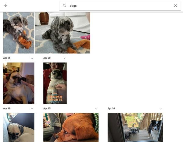 Những tuyệt chiêu làm chủ Google Photos ảnh 2