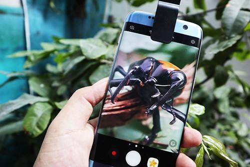 Độ ống kính chụp macro cho smartphone ảnh 4
