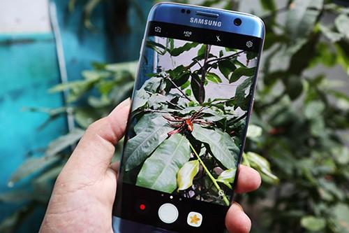 Độ ống kính chụp macro cho smartphone ảnh 3