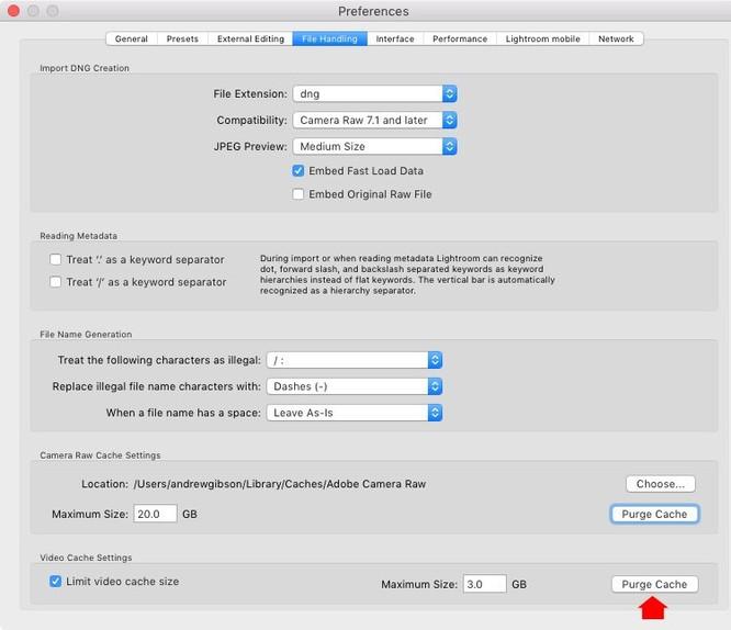 Cách để cải thiện hiệu năng và tốc độ Lightroom ảnh 11