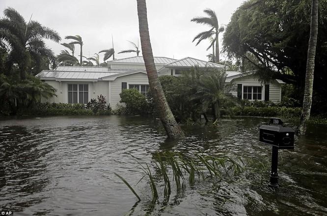 """""""Quái vật"""" Irma cuồng nộ khiến Florida (Mỹ) tan hoang ảnh 4"""