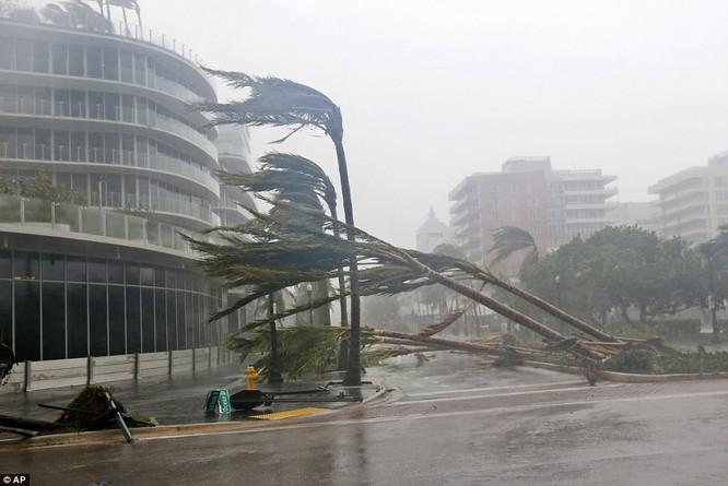 """""""Quái vật"""" Irma cuồng nộ khiến Florida (Mỹ) tan hoang ảnh 8"""