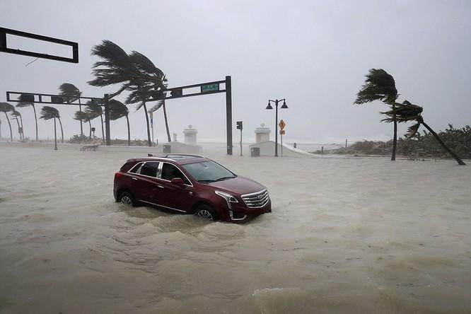 """""""Quái vật"""" Irma cuồng nộ khiến Florida (Mỹ) tan hoang ảnh 9"""