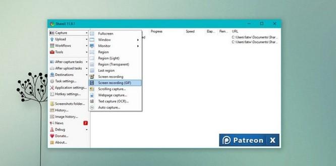 5 ứng dụng quay phim màn hình định dạng GIF cho Windows 10 ảnh 7