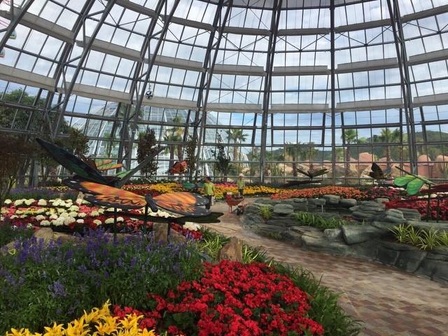 Vườn ôn đới đầy màu sắ với sự góp mặt của các loà hoa xứ lạnh