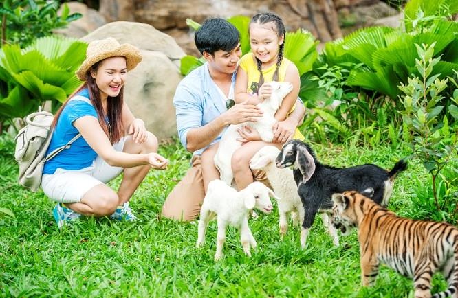 Vườn thú mở Safari chỉ có tại Vinpearl Phú Quốc