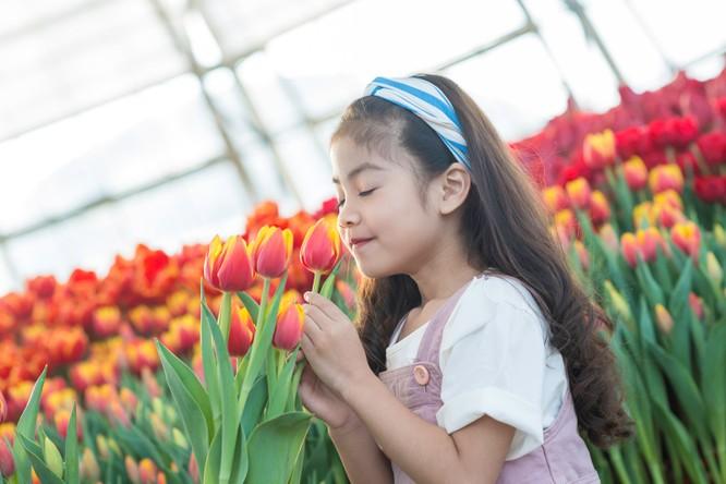 Mùa xuân đến trong những cánh hoa rực rỡ, trong nụ cười và trong những phút giây bình yên vô tận.