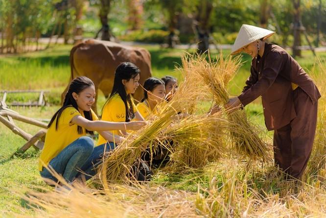 """Câu chuyện ngày hè theo mẹ ra đồng gặt lúa đầy ắp kỷ niệm trong ký ức mỗi người Việt Nam được """"kể"""" bằng hành động trực quan ngay tại Vinpearl Land Nam Hội An."""