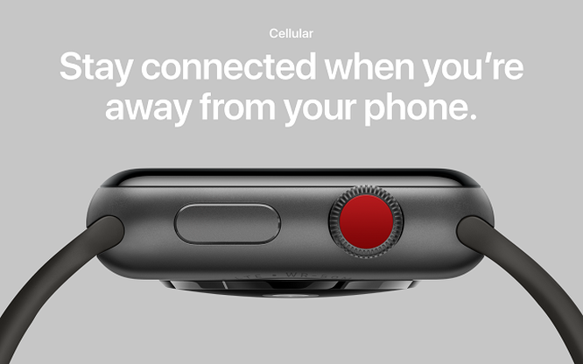 Apple chưa thể sửa hết lỗi của Apple Watch 3 ảnh 3