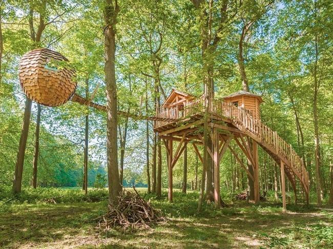 35 ngôi nhà trên cây tuyệt đẹp khiến bạn muốn sống thử một lần ảnh 10