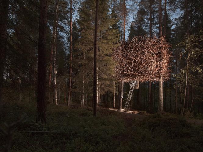 35 ngôi nhà trên cây tuyệt đẹp khiến bạn muốn sống thử một lần ảnh 13
