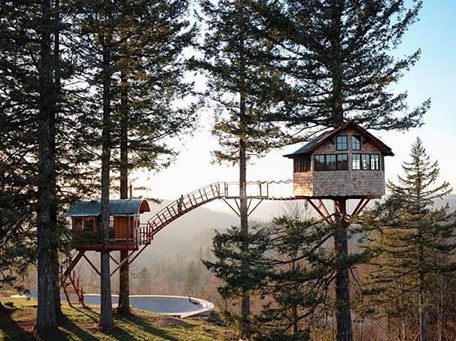 35 ngôi nhà trên cây tuyệt đẹp khiến bạn muốn sống thử một lần ảnh 14