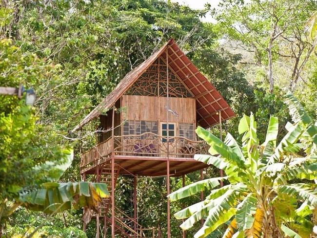35 ngôi nhà trên cây tuyệt đẹp khiến bạn muốn sống thử một lần ảnh 17