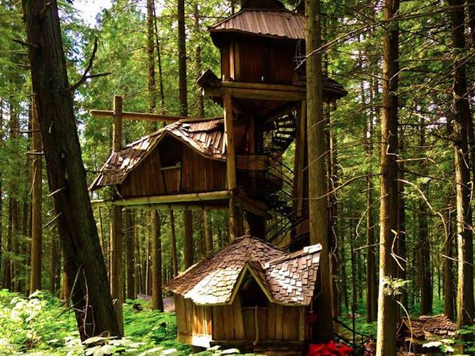 35 ngôi nhà trên cây tuyệt đẹp khiến bạn muốn sống thử một lần ảnh 18