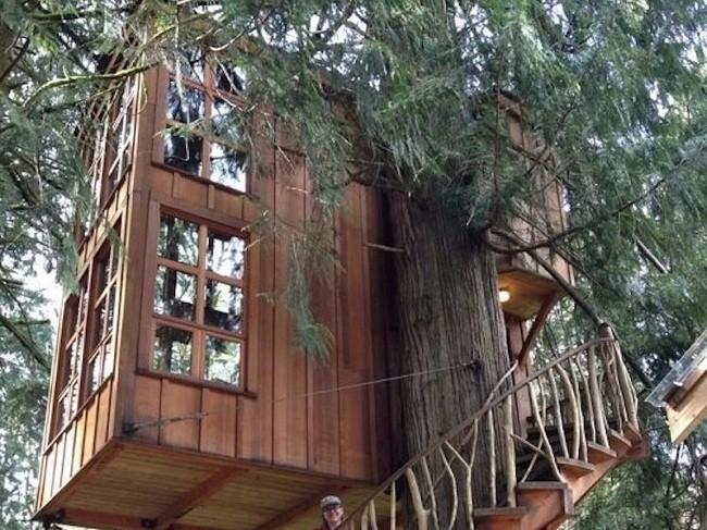 35 ngôi nhà trên cây tuyệt đẹp khiến bạn muốn sống thử một lần ảnh 19