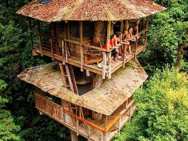 35 ngôi nhà trên cây tuyệt đẹp khiến bạn muốn sống thử một lần ảnh 22