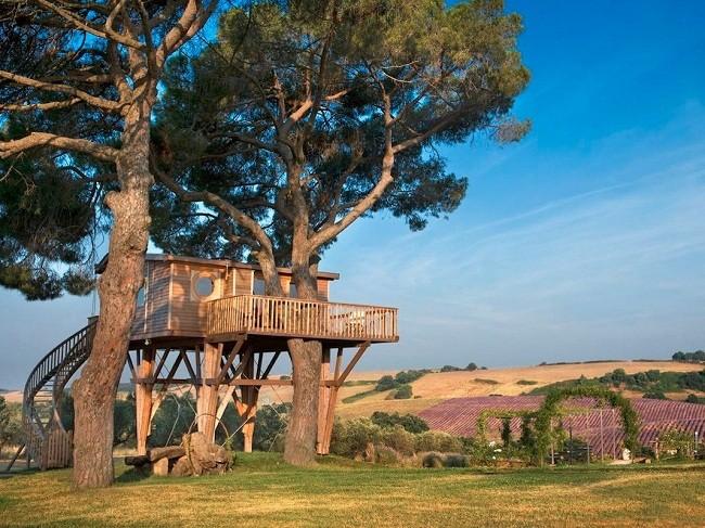35 ngôi nhà trên cây tuyệt đẹp khiến bạn muốn sống thử một lần ảnh 23