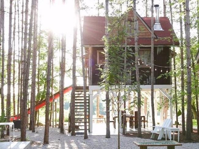 35 ngôi nhà trên cây tuyệt đẹp khiến bạn muốn sống thử một lần ảnh 24